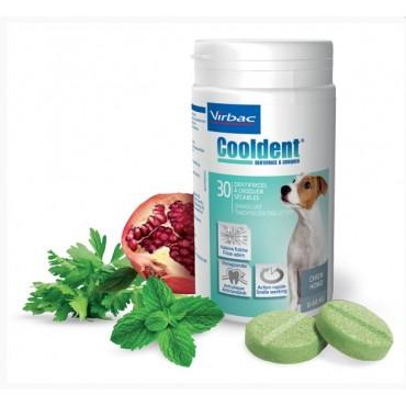 Cooldent συμπλήρωμα κατά του σχηματισμού της οδοντικής πλάκας και της δυσοσμίας